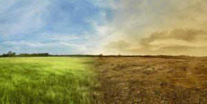Webinar IFA - KPMG | Risques et opportunités liés au changement climatique : quels enjeux pour les entreprises et leurs organes de gouvernance